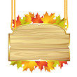 Wood banner with autumn colorful leaves