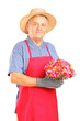 A mature gardener holding a bouquet of flowers