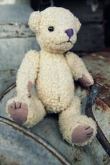 Teddybär und Milchkanne