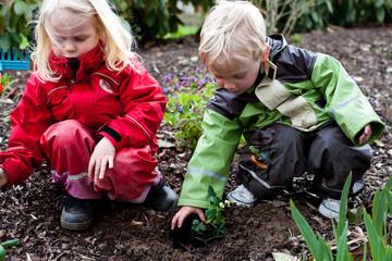 Junge und Mädchen pflanzen etwas ein