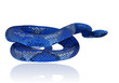 Beautiful blue water snake realistic