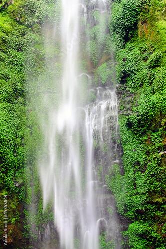 Foto op Plexiglas Indonesië Wall waterfall