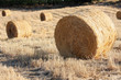 Bales of Hay - Balle di fieno