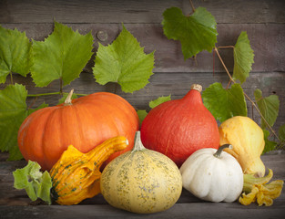 Autumn pumpkins on wooden boards still life