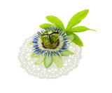 passionflower on a napkin