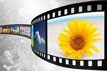 Film films - Pellicola films