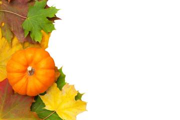 Herbstblätter mit Kürbis