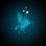 Magic Pegasus