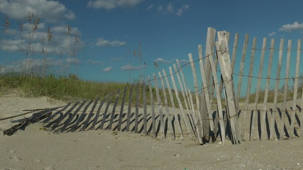 Protected dune