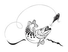 Pike i wędkarstwo przynęty, ilustracji wektorowych