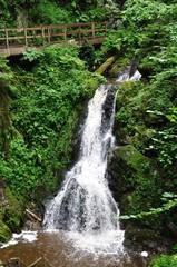 Wasserfall in der Lotenbachklamm.