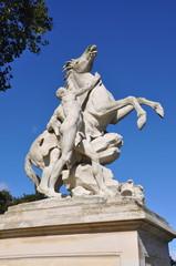 Cheval au Parc de Marly-le-Roi (Yvelines)