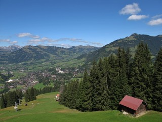 View Of Gstaad, Ski Lift In The Summer, Forest
