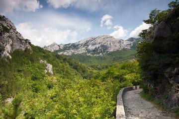Footpath on mountain, Velebit, Croatia