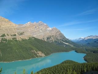 View on turquoise Peyto Lake