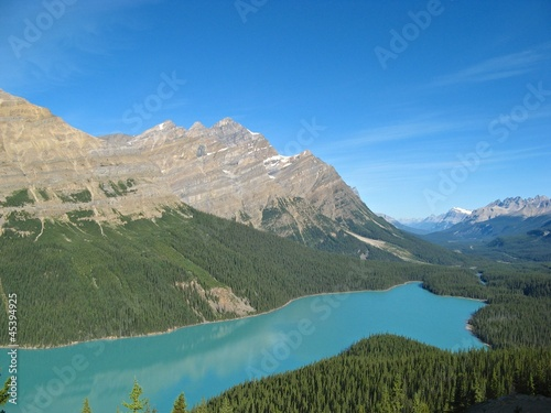 View on turquoise Peyto Lake
