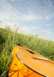 Closeup view of a wooden guitar lying in grass