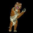 Tiger attacking
