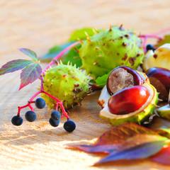 Herbstarrangement