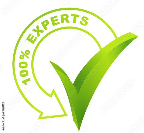 100 pour 100 experts sur symbole vert 3d