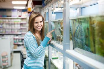 Woman chooses  fish  at petshop