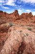 Nevada - Petroglyph Canyon