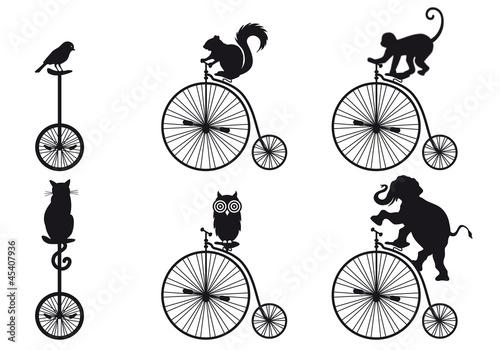 retro bicycle with animals, vector set - 45407936