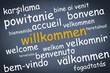 willkommen in vielen sprachen