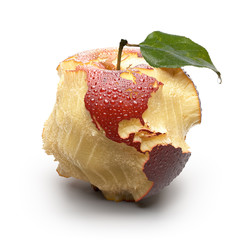 Apple with carved continents. America