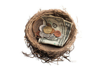 image of nest with coins and paper currency