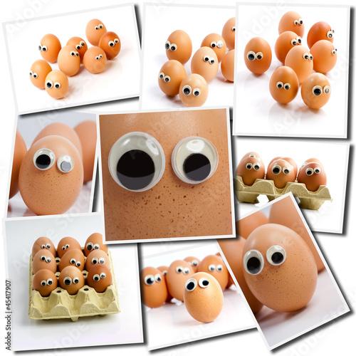 Looking eggs
