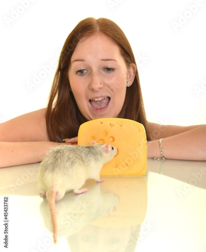 rat eaitng cheese