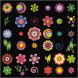 The complete set of elements of design (flowers)