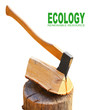 Cut logs fire wood and axe. Renewable resource of a energy.
