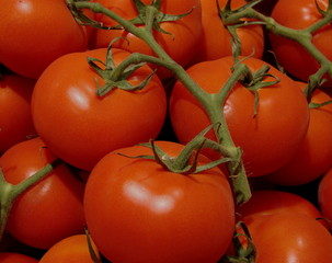 rote große tomaten