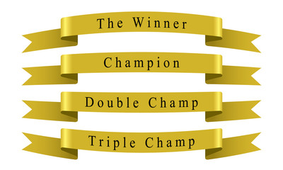 Winner Champion Ribbon set vector