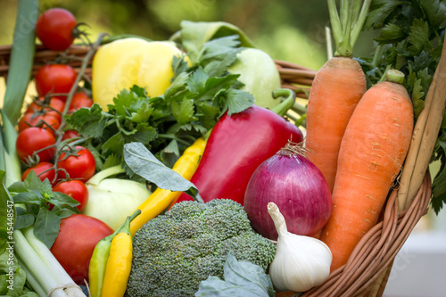 Fresh organic vegetables in the wicker basket