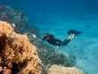 Beautiful freediver girl rises along coral reef