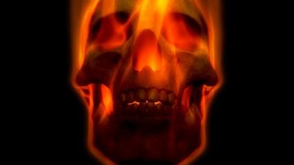 3D Skull on Fire