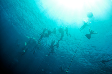 Freediving training in the depth of Blue Hole