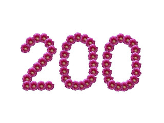 Ziffer 200 - Blütenschrift