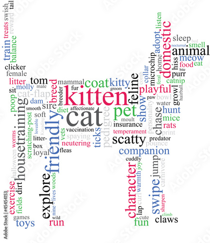 cat outline with describing words