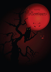 Halloween illustration owl on moon background. Vector art