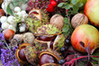 Gesammelte Herbstfrüchte