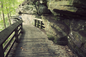 Tourist trail in Cuyahoga Valley National Park