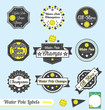 Vector Set: Retro Water Polo League Labels and Badges