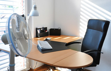 Fan in the office