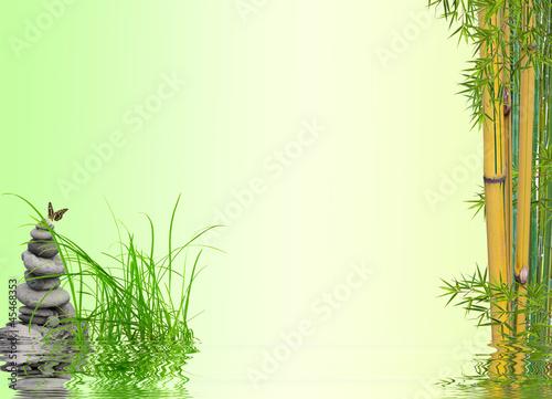 Fototapeten,natur,zen,entspannung,gras
