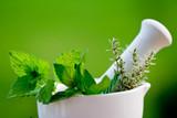Fototapety Fresh herbs in the mortar - alternative medicine
