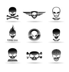 Skulls. Vol 1.